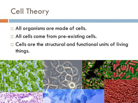Cell Theory  All organisms are made of cells.  All cells come from pre-existing cells.  Cells are the structural and functional units of living things.