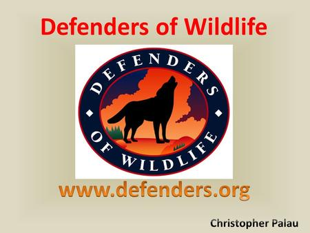 Defenders of Wildlife. Protect and restore species throughout North America by transforming policies and promoting innovative solutions Want to conserve.