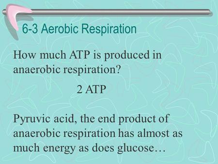 6-3 Aerobic Respiration How much ATP is produced in anaerobic respiration? 2 ATP Pyruvic acid, the end product of anaerobic respiration has almost as.
