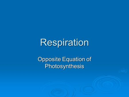 Respiration Opposite Equation of Photosynthesis.  Opposite of Photosynthesis is respiration C 6 H 12 O 6 + 6O 2  6CO 2 + 6H 2 O + Energy ATP Glucose.