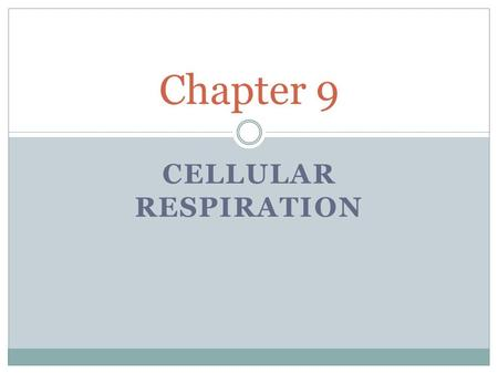 CELLULAR RESPIRATION Chapter 9. Cellular Respiration The process that releases energy by breaking down glucose and other food molecules in the presence.