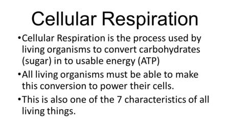 Cellular Respiration Cellular Respiration is the process used by living organisms to convert carbohydrates (sugar) in to usable energy (ATP) All living.