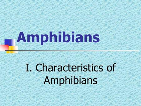 Amphibians I. Characteristics of Amphibians Introduction Why would water creatures (fish) want to move on land? Why would this be advantageous?