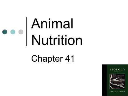 Animal Nutrition Chapter 41 Animals are heterotrophs They eat for three reasons: To obtain fuel for cell processes To get carbon to build organic molecules.