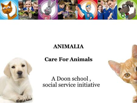 ANIMALIA Care For Animals A Doon school, social service initiative 1.