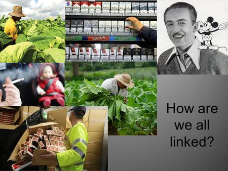 How are we all linked?. What do you know about cigarettes?  resource/Cigarettes-and-the-economy- 6187510/