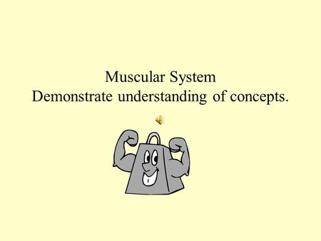 Muscular System Demonstrate understanding of concepts.