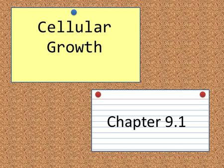 Cellular Growth Chapter 9.1. Main Idea Cells grow until they reach their size limit, then they either stop growing or divide Explain why cells are relatively.