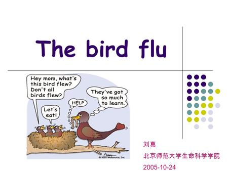 The bird flu 刘真 北京师范大学生命科学学院 2005-10-24. What's BIRD FLU? Avian influenza influenza A virus(H5N1 strain) Mutation-----human.