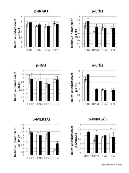 Fig. S1; Ritter et al. 2010 Relative induction of p-IRAK1 Relative induction of p-RAF Relative induction of p-MEK1/2 Relative induction of p-Erk1 Relative.