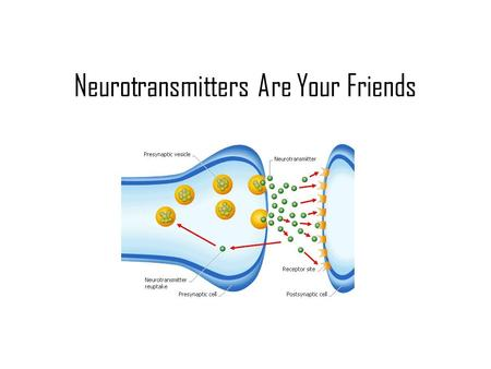 Neurotransmitters Are Your Friends