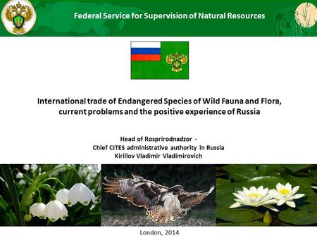 International trade of Endangered Species of Wild Fauna and Flora, current problems and the positive experience of Russia МИНИСТЕРСТВО ПРИРОДНЫХ РЕСУРСОВ.