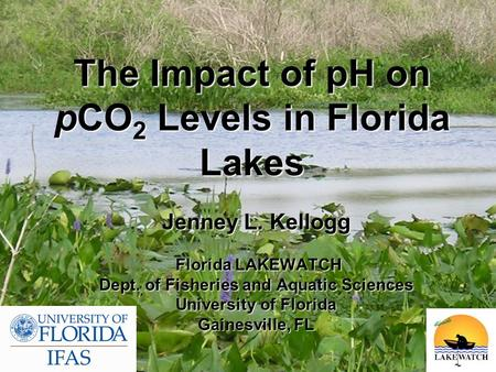 The Impact of pH on pCO 2 Levels in Florida Lakes Jenney L. Kellogg Florida LAKEWATCH Florida LAKEWATCH Dept. of Fisheries and Aquatic Sciences University.