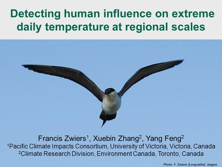 WCRP Extremes Workshop - 27-29 Sept 2010 Detecting human influence on extreme daily temperature at regional scales Photo: F. Zwiers (Long-tailed Jaeger)