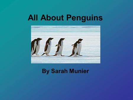 All About Penguins By Sarah Munier Introducing: Charlie.