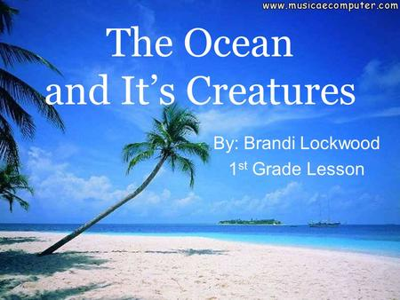 The Ocean and It's Creatures By: Brandi Lockwood 1 st Grade Lesson.