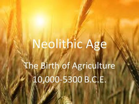 Neolithic Age The Birth of Agriculture 10,000-5300 B.C.E.