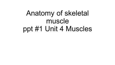Anatomy of skeletal muscle ppt #1 Unit 4 Muscles.