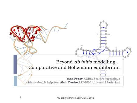 Beyond ab initio modelling… Comparative and Boltzmann equilibrium Yann Ponty, CNRS/Ecole Polytechnique with invaluable help from Alain Denise, LRI/IGM,