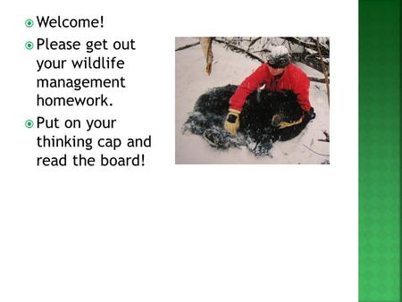  Welcome!  Please get out your wildlife management homework.  Put on your thinking cap and read the board!