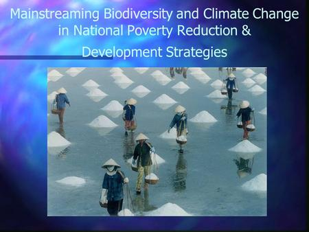 Mainstreaming Biodiversity and Climate Change in National Poverty Reduction & Development Strategies.