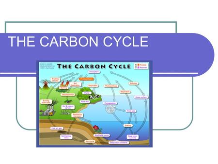 THE CARBON CYCLE. What Is Carbon? Carbon (C) is an element All things (matter) are made of elements Carbon is the most important element found in ALL.