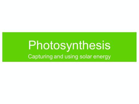 "Photosynthesis Capturing and using solar energy. Does photosynthesis: create energy? use energy? ""store"" energy? release energy? No Yes No Quick, think!"