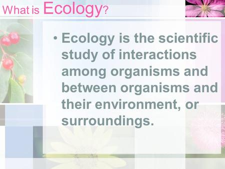 What is Ecology ? Ecology is the scientific study of interactions among organisms and between organisms and their environment, or surroundings.