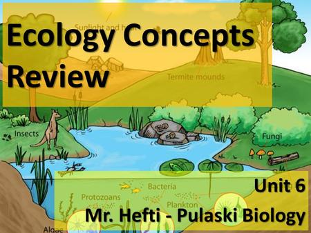 Ecology Concepts Review Unit 6 Mr. Hefti - Pulaski Biology.