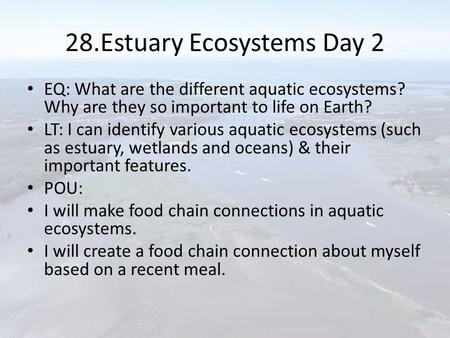 28.Estuary Ecosystems Day 2 EQ: What are the different aquatic ecosystems? Why are they so important to life on Earth? LT: I can identify various aquatic.