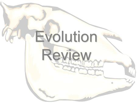 Evolution Review. Who proposed inheritance of acquired characteristics?