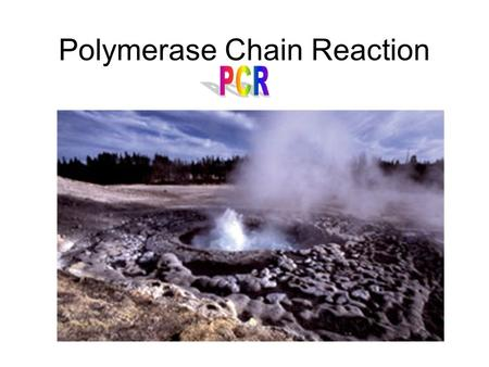 Polymerase Chain Reaction (PCR). PCRPCR PCR produces billions of copies of a specific piece of DNA from trace amounts of starting material. (i.e. blood,
