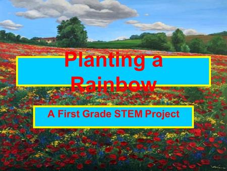 Planting a Rainbow A First Grade STEM Project. Challenge Your group will design and build a rainbow flower garden.