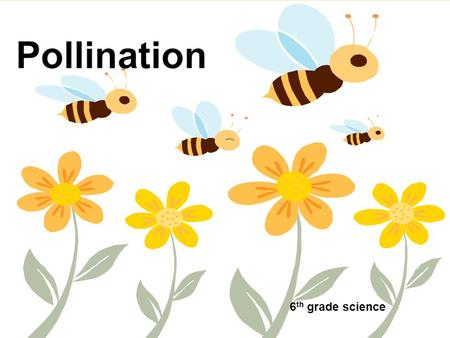 Pollination 6th grade science.