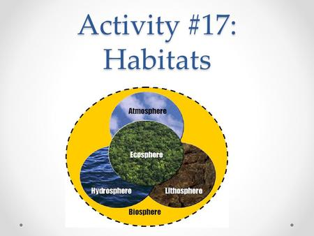 Activity #17: Habitats. EQ What are some of the roles of the organisms in ecosystems? Why do you find similar groups of organisms in similar environments.