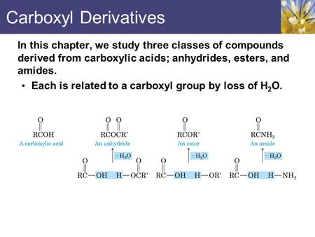 Carboxyl Derivatives In this chapter, we study three classes of compounds derived from carboxylic acids; anhydrides, esters, and amides. Each is related.