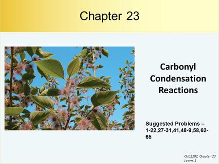 CHE2202, Chapter 23 Learn, 1 Carbonyl Condensation Reactions Chapter 23 Suggested Problems – 1-22,27-31,41,48-9,58,62- 65.