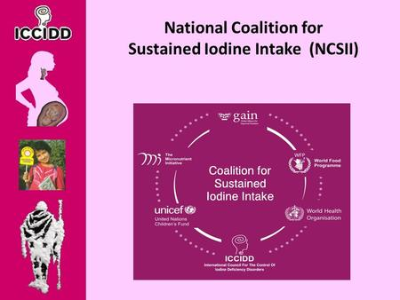 National Coalition for Sustained Iodine Intake (NCSII)
