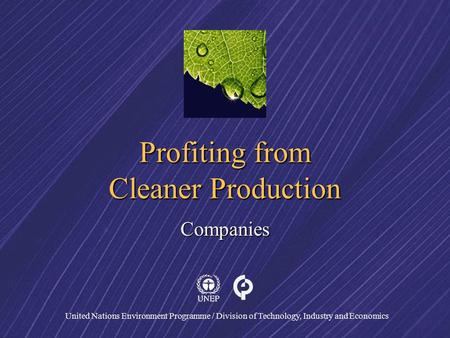 United Nations Environment Programme / Division of Technology, Industry and Economics Profiting from Cleaner Production Companies.