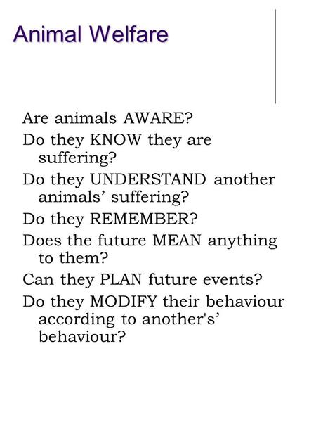 Animal Welfare Are animals AWARE? Do they KNOW they are suffering? Do they UNDERSTAND another animals' suffering? Do they REMEMBER? Does the future MEAN.