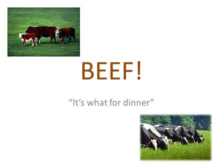 "BEEF! ""It's what for dinner"". CUT A particular edible part of meat, poultry or fish."