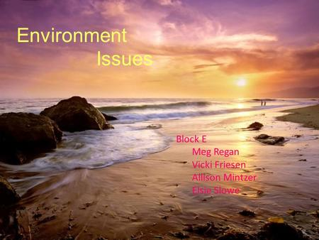 Environment Issues Block E Meg Regan Vicki Friesen Allison Mintzer Elsie Slowe.