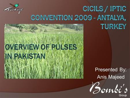 Presented By: Anis Majeed Group. Outline  Pakistan's Overview  Political and Economic Overview  Pulses in Pakistan  Production Constrains  Recommendation.