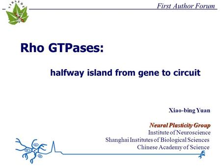 First Author Forum Rho GTPases: halfway island from gene to circuit Xiao-bing Yuan Neural Plasticity Group Institute of Neuroscience Shanghai Institutes.