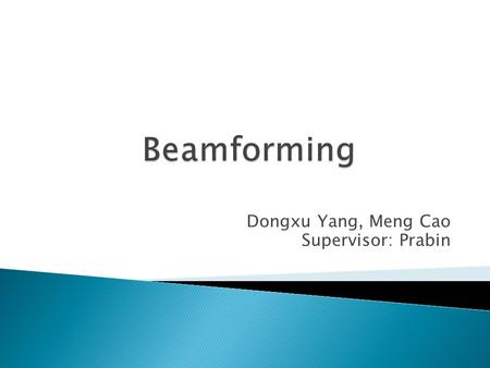 Dongxu Yang, Meng Cao Supervisor: Prabin.  Review of the Beamformer  Realization of the Beamforming Data Independent Beamforming Statistically Optimum.