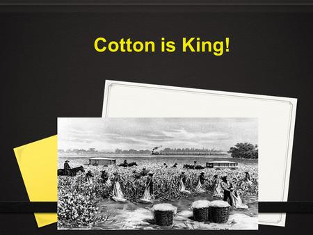 Cotton is King!.