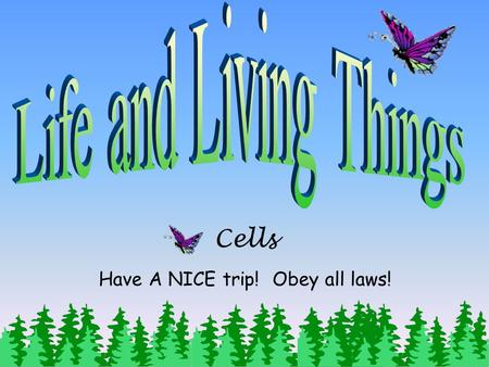 Cells Have A NICE trip! Obey all laws! Objective: Students will be able to provide reasons to support the conclusions that recognize unicellular organisms.