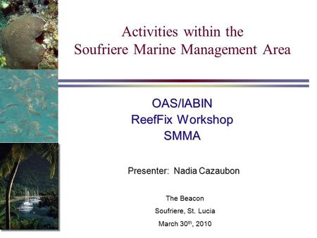 Activities within the Soufriere Marine Management Area Presenter: Nadia Cazaubon OAS/IABIN ReefFix Workshop SMMA The Beacon Soufriere, St. Lucia March.