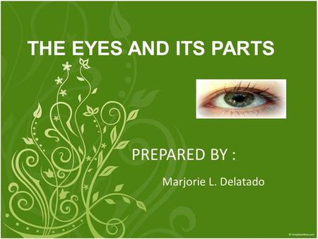 PREPARED BY : Marjorie L. Delatado THE EYES AND ITS PARTS.