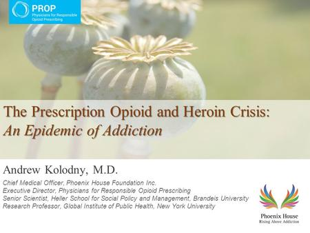 The Prescription Opioid and Heroin Crisis: An Epidemic of Addiction The Prescription Opioid and Heroin Crisis: An Epidemic of Addiction Andrew Kolodny,